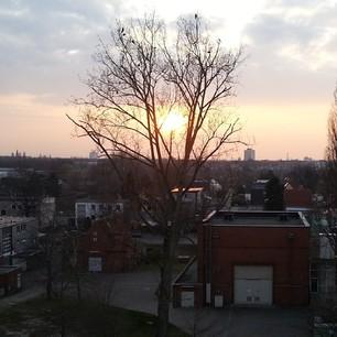 Ich hörte, in Berlin war das Wetter heut nicht so pralle? Hier, eine Sonne.