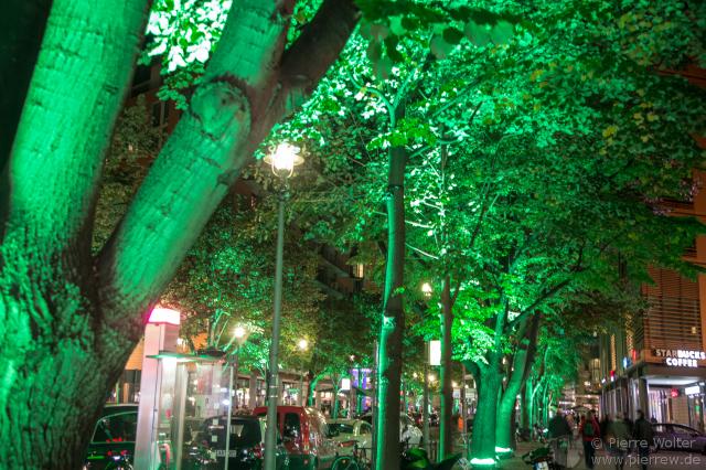 Bunte Bäume // Berlin leuchtet 2015
