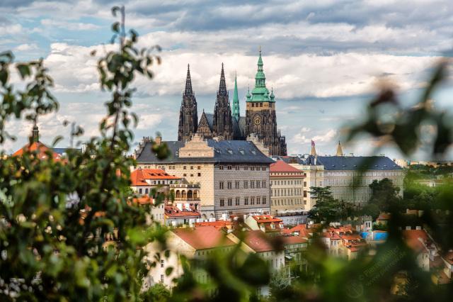 Prager Burg durchs Grün gesehen