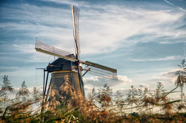 Besuch in Kinderdijk 2018
