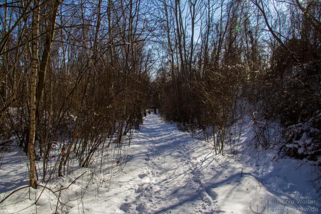 20cm Schnee in Natur-Park Südgelände...