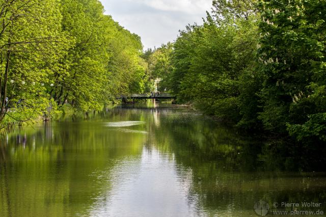 Hase (Gewässer) in Osnabrück