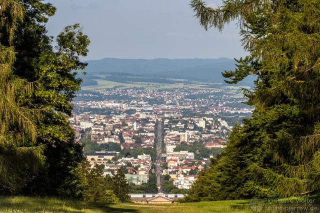An den Bäumen vorbei nach Kassel
