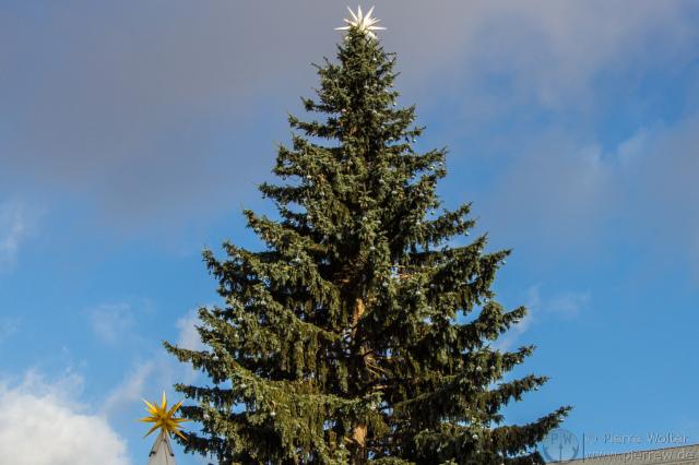 Weihnachtsbaum Gendarmenmarkt