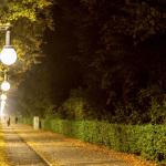 Herbst am Tiergarten