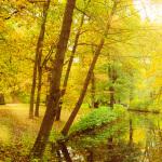 Herbst 2016, Schlosspark Charlottenburg