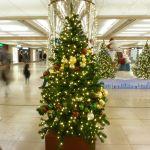 Weihnachten @ Frankfurt/Mail Flughafen