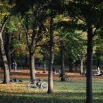 Friedrichshain im Herbst