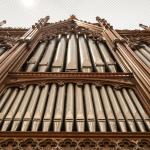 Orgel / Opstandingskerk Leiden
