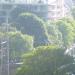20.05.2012: Summertime