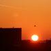 Sonnenaufgang, 05.03.2013