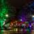 FoL 2014 // Farbige Bäume