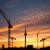 Sonnenuntergangs-Kran-Silhouetten