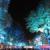 Potsdamer Platz - RainbowTrees