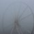 Nebel, 15.11.2012 (Riesenrad am Morgen)