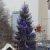 Weihnachtsbaum am Roten Rathaus