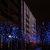 Blaues Gehölz am Berliner Dom