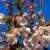 Kirschblüten-Reste