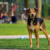 Neugieriger Hund im Monbijoupark