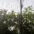 Regen am Zugfenster
