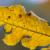 Gelbes Blatt im Herbst